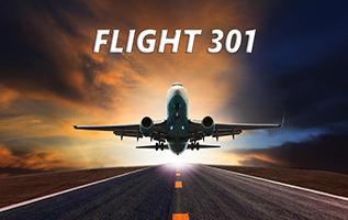 טיסה 301